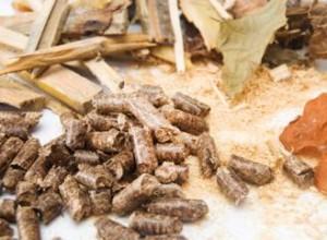 Biomasa čo je dobré vedieť, než ju začnete spaľovať