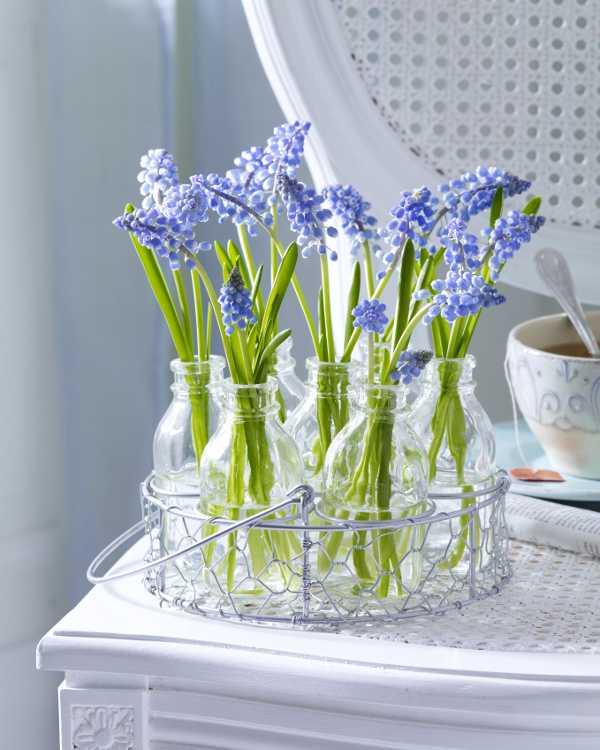 850e36b02 Kvety dekorácie, ktoré žijú. | Časopis-bývanie.sk